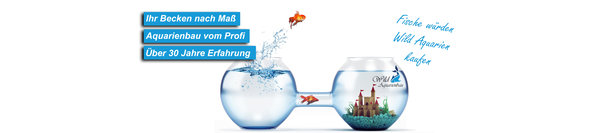 Aquarienbau-header
